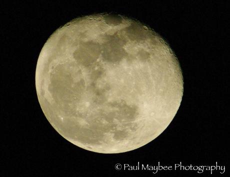 Moon January 29, 2009