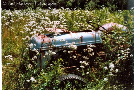 Tractor - Paul Maybee