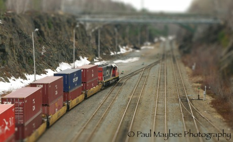 Miniature Train - Paul Maybee