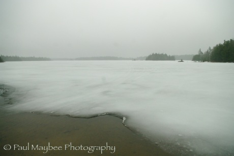 Lake Jolly - Paul Maybee