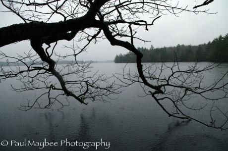 Rain on Kejimkujik Lake