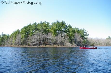 Roseway Lake