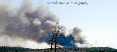 Spryfield Fire