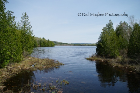 Robin Hood Lake