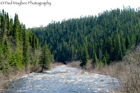 Patapedia River Put In