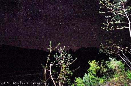 Cross Island Night Sky