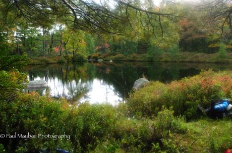 Sisketch Brook Stillwater